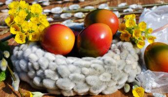 Œufs de Pâques coloré